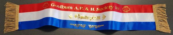 Champion Show Ribbon